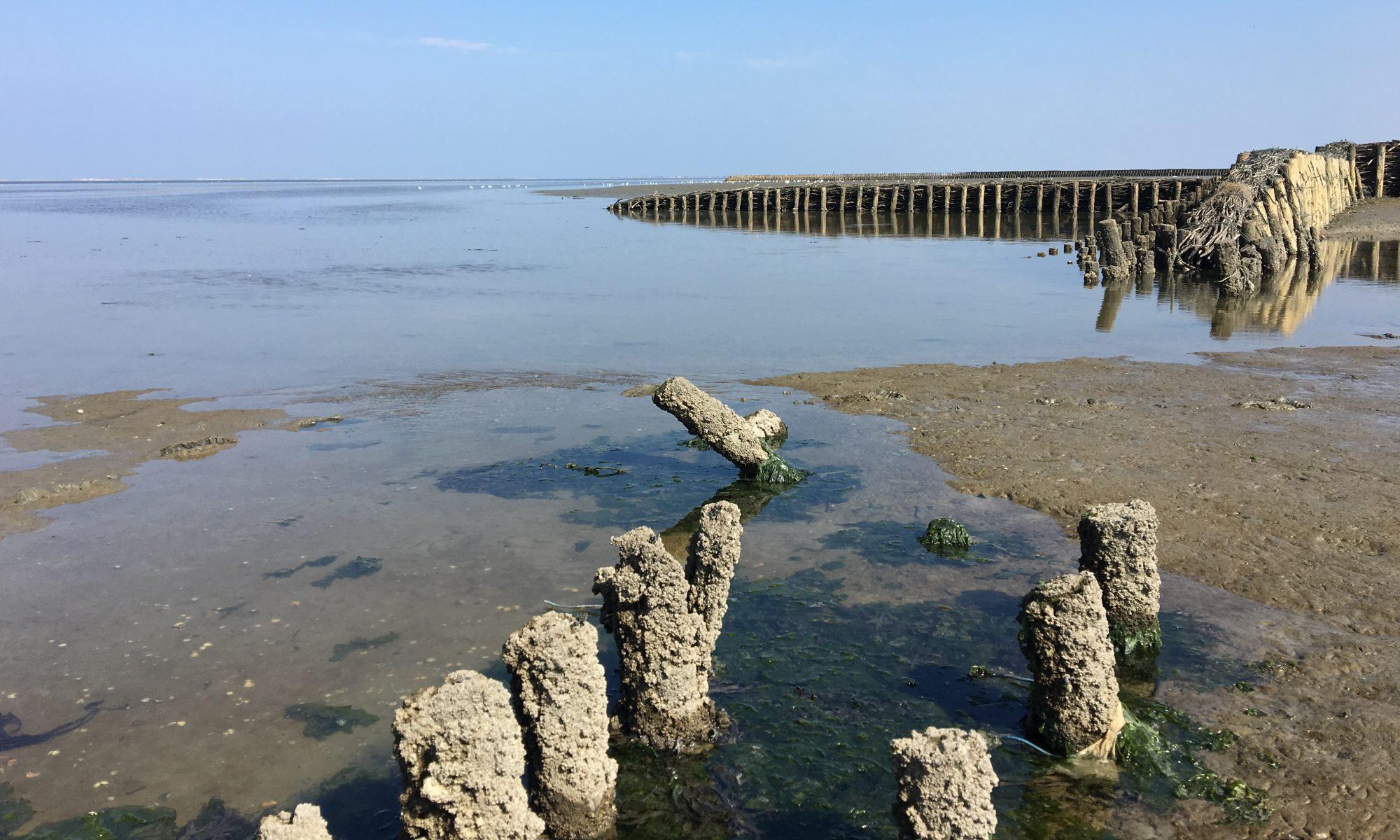 Ferien in Neßmersiel an der Ostfriesischen Nordseeküste