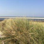 Ferienhaus, Nessmersiel, Nordseeküste, Urlaub, Auszeit, Ferienzeit