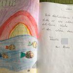 Ferienhaus, Neßmersiel, Nordsee, Ostfriesland, mieten, Seehund, Seestern, Muschel, Strand, UNESCO